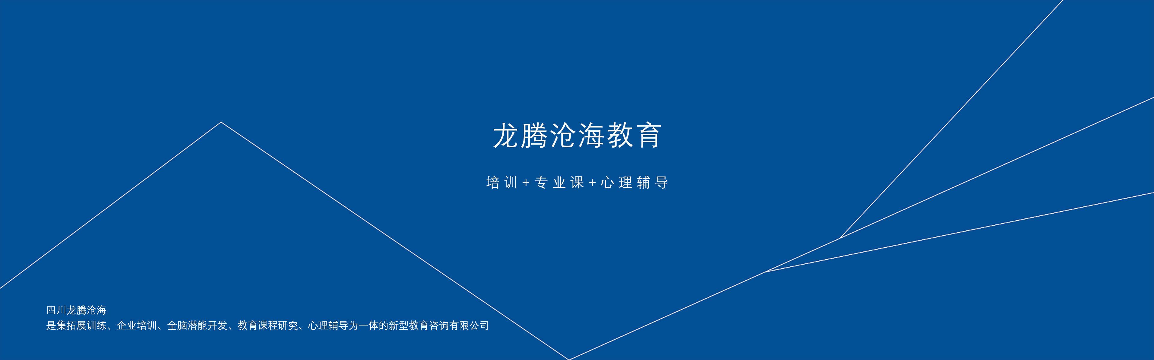 龙腾沧海教育网站建设
